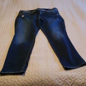 Women's Silver Jean Co Jeans